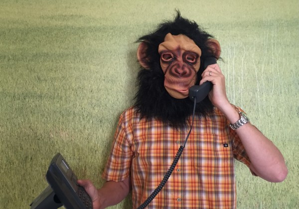 About Monkey Phone Call: Monkey Placing Call